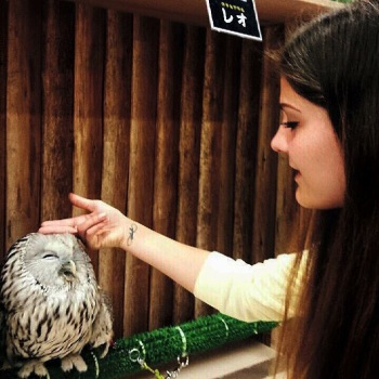 Owl Cafe in Kobe