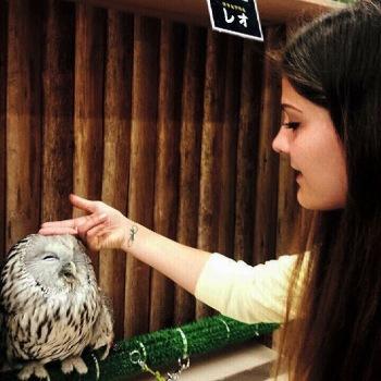 Owl Cafe in Kobe
